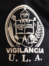 La imagen esta mal utilizada, no se respeto la Identidad Institucional aprobada en Consejo Universitario